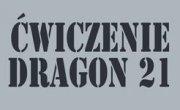 dragon-21